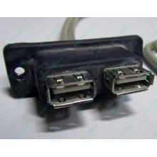 USB-разъемы HP 451784-001 (459184-001) для корпуса HP 5U tower (Химки)